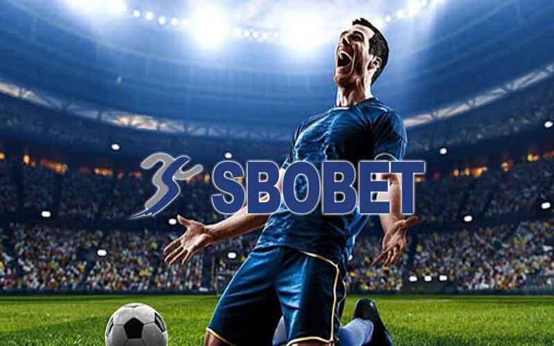 news-site-Online-football-betting-Pay-attention-to-members-at-all-levels